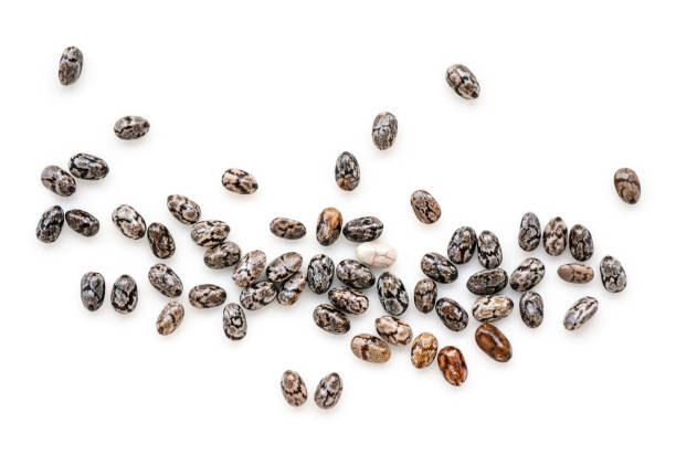Closeup macro of small organic chia seeds isolated on a white background stock photo