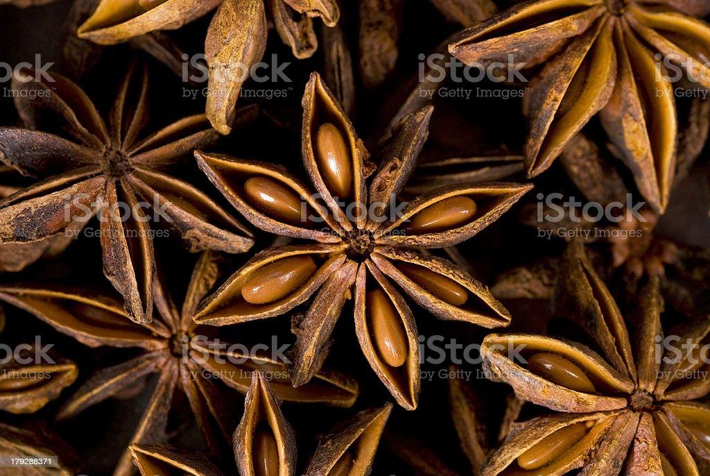 Close-up montage of star anise bildbanksfoto