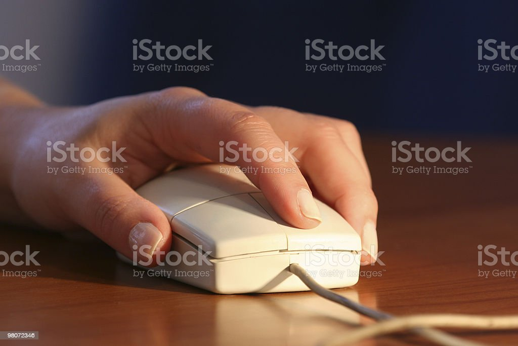 Close-up Mouse royalty-free stock photo