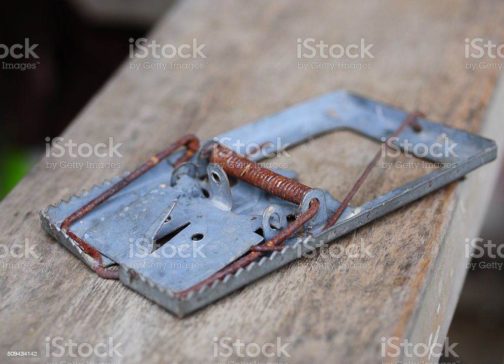 closeup mouse trap on a white background stock photo
