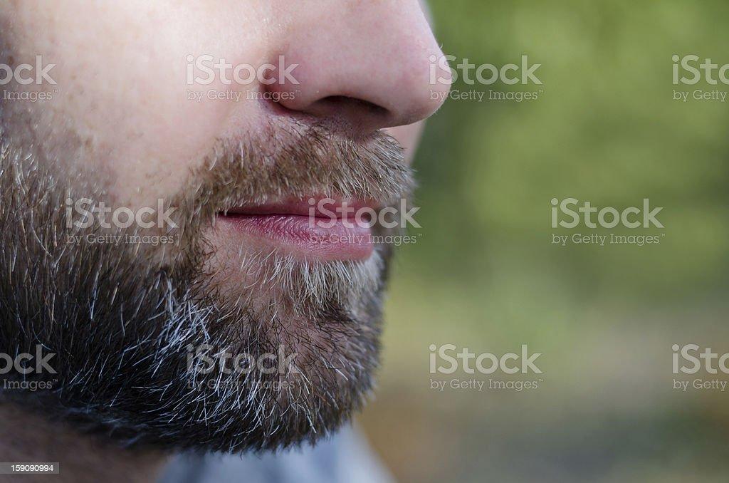 Close-up of a beard royalty-free stock photo