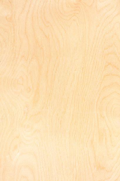 birch sperrholz muster - schalung stock-fotos und bilder