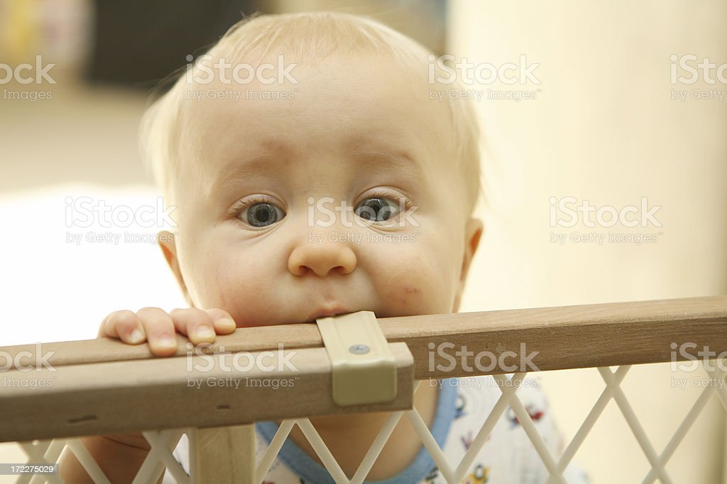 Closeup of a blue eyed baby boy teething on a baby gate stock photo