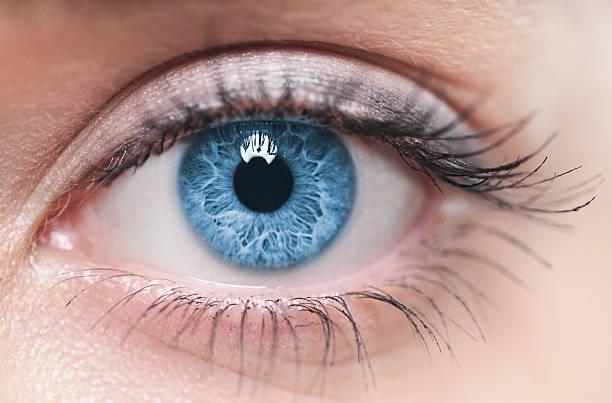 a close-up of a blue female human eye - 特寫 個照片及圖片檔