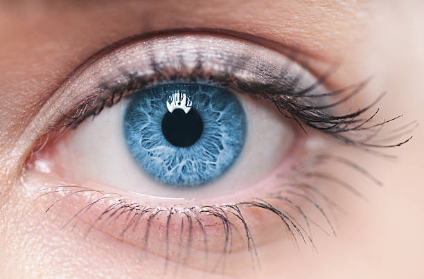 a close-up of a blue female human eye - eye stock pictures, royalty-free photos & images