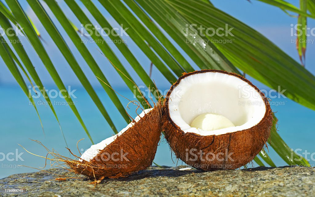 A close-up of a broken coconut on the beach royalty-free stock photo