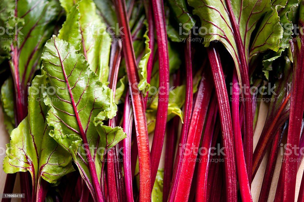 Close-up of a bunch of beet greens stock photo