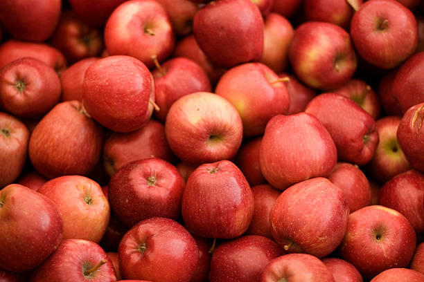 Close-up of a bunch of ripe red apples stock photo