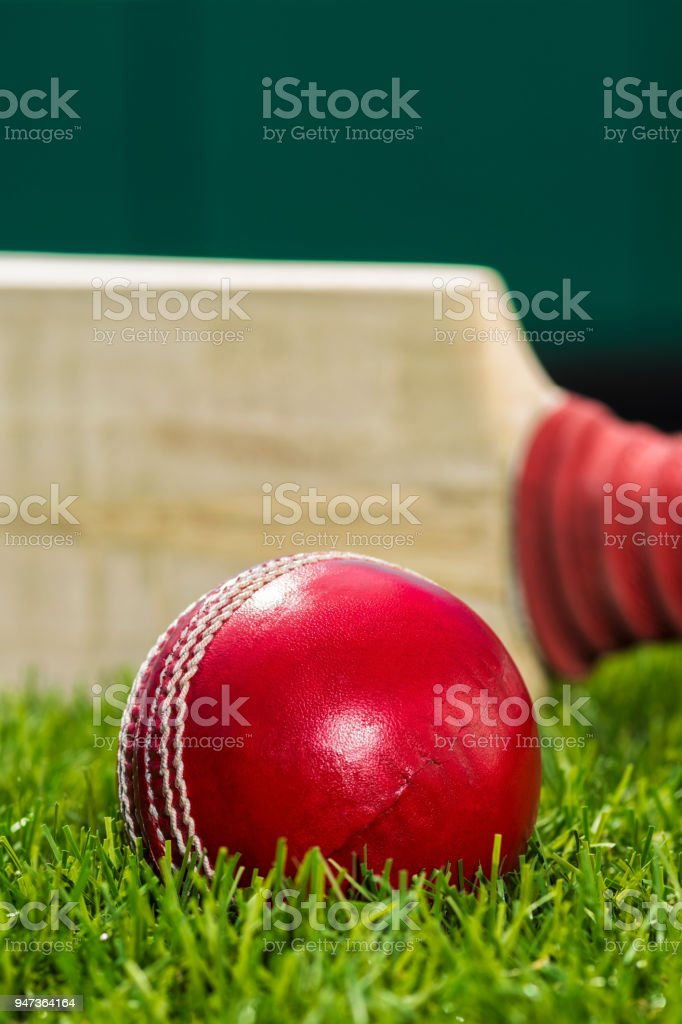 A close-up of a Cricket ball sitting in the grass with a bat on edge stock photo