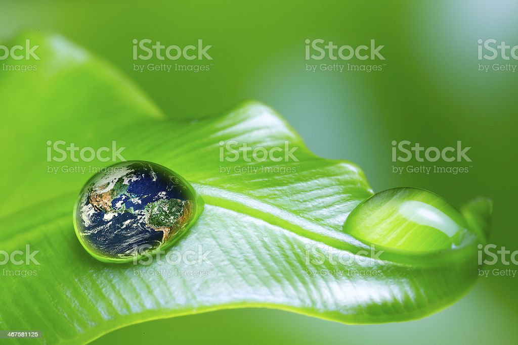 Close-up of a earth concept of recovery stock photo