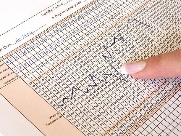 A close-up of a fertility chart stock photo