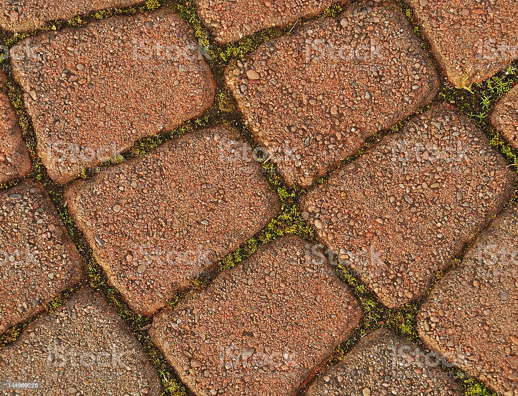 Close-up of a Garden Path royalty-free stock photo