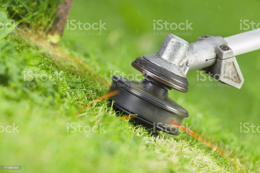 A close-up of a garden trimmer stock photo