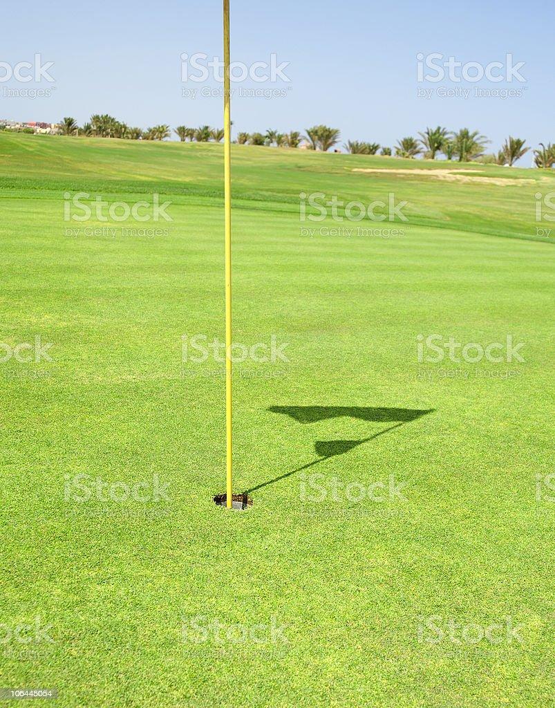Closeup of a golf course green royalty-free stock photo