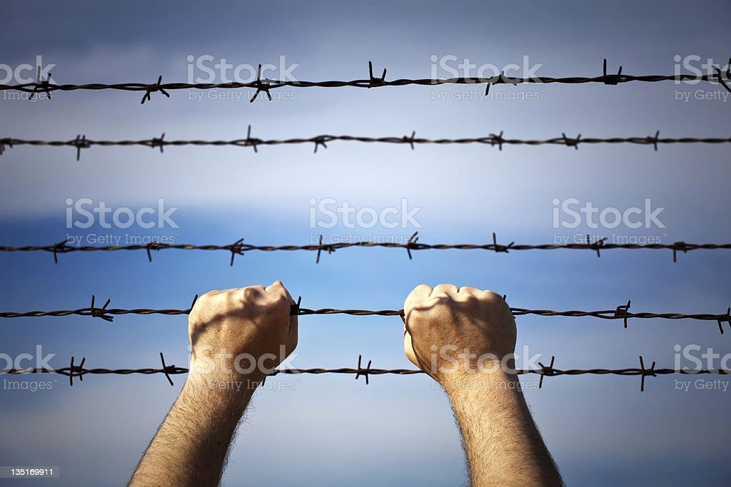 Closeup of a hands on barbed wire stock photo