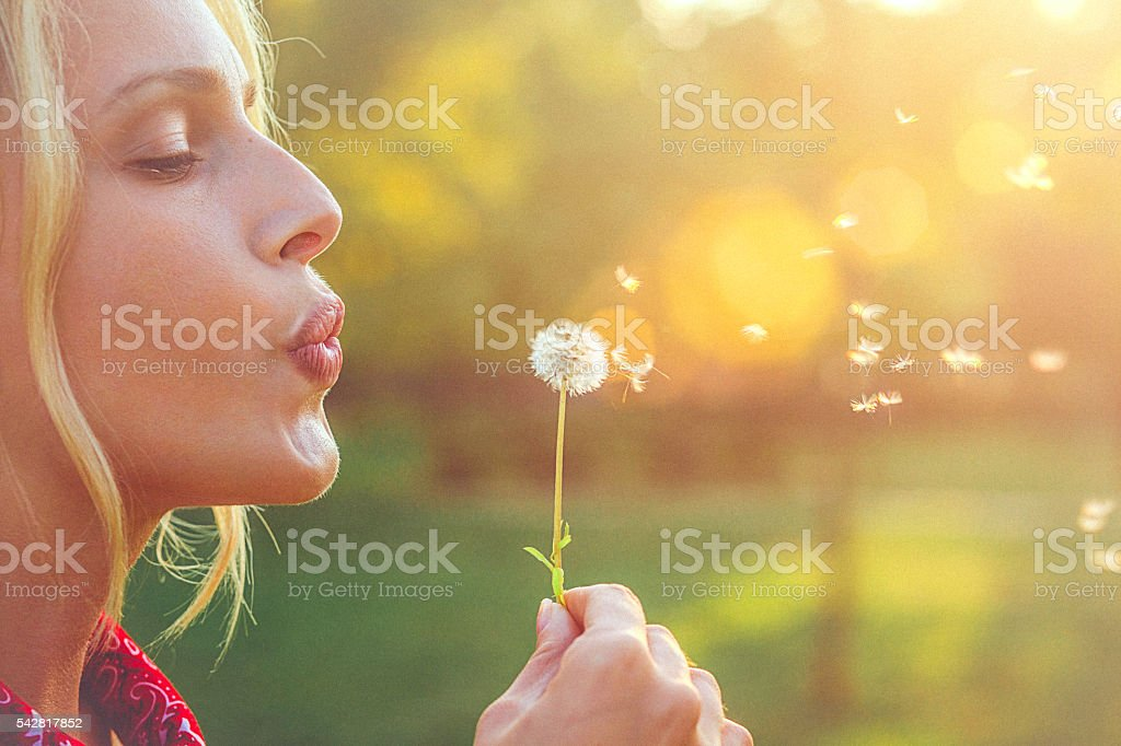 Close-up of a happy young blonde woman blowing dandelion stock photo