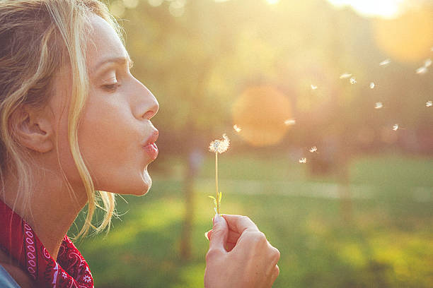 close-up of a happy young blonde woman blowing dandelion - blowing stock photos and pictures