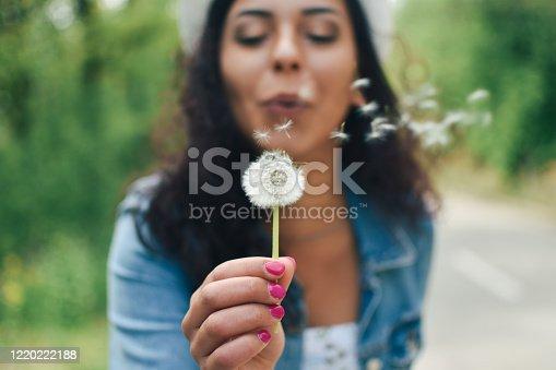 Women, Wind, Dandelion, Blowing, Happiness