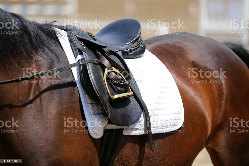Beautiful handmade dressage horse riding saddle with girth, stirrup...