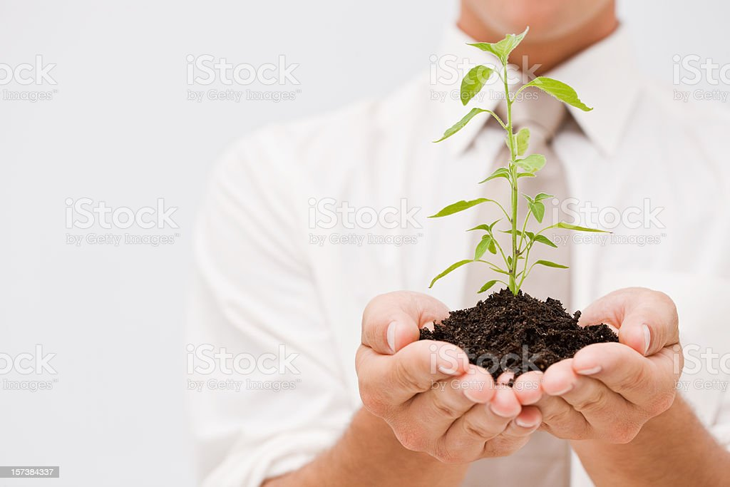 Closeup of a man holding plant royalty-free stock photo