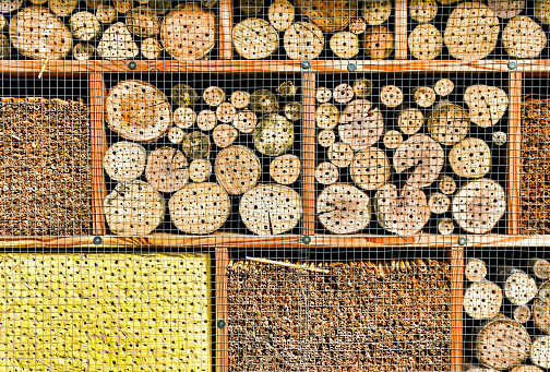 Close-up of a nesting aid for insects (insect hotel)