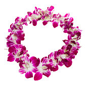 Close-up of a purple and white lei over white background