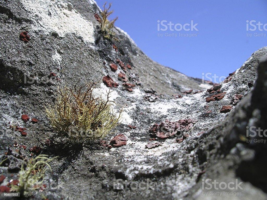 Nahaufnahme von einem rock – Foto