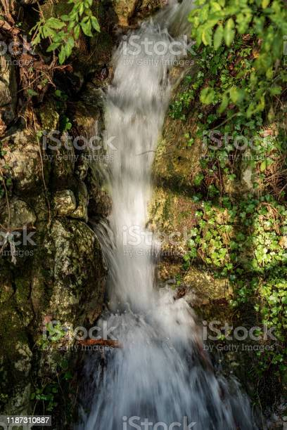 Photo of Close-up of a small stream with waterfall - Trentino Alto Adige Italy