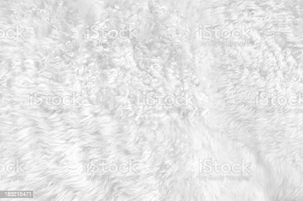 Free soft fur Images, Pictures, and Royalty-Free Stock