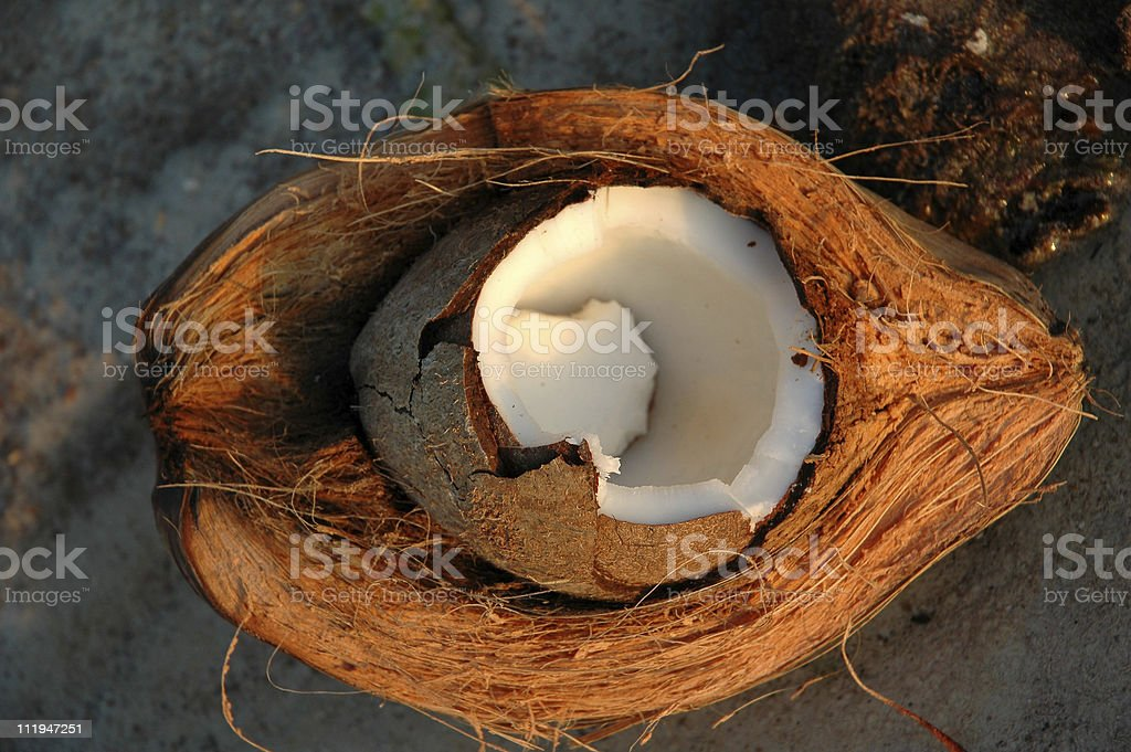 Close-up of a splitted coconut husk fresh coconut meat in its outer husk and shell,lying on the beach. Asia Stock Photo