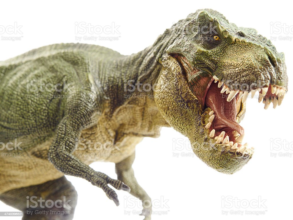 Close-up of a T-Rex dinosaur with sharp teeth on white back stock photo