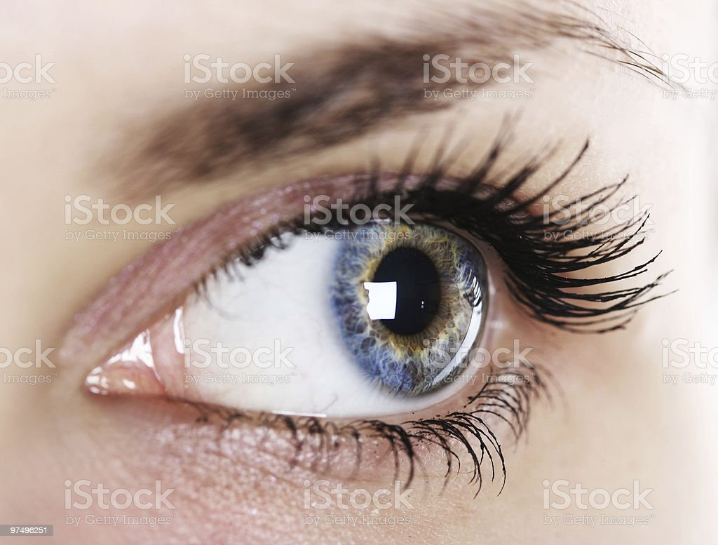 Close-up of a woman's eye and eyelashes royalty-free stock photo