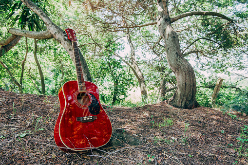 istock Close-up of acoustic guitar lying on a woodland, vintage style with copy space 1181818551