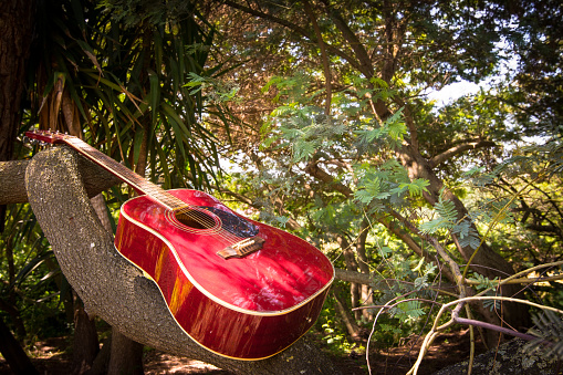 istock Close-up of acoustic guitar lying on a woodland, vintage style with copy space 968903518