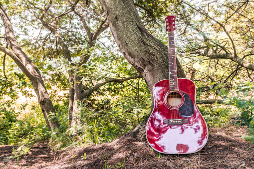 istock Close-up of acoustic guitar lying on a woodland, vintage style with copy space 968903582