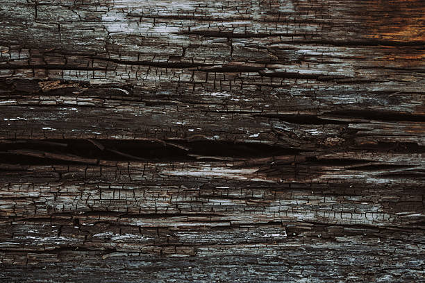 Close-Up of Aged Cracked Natural Wood stock photo