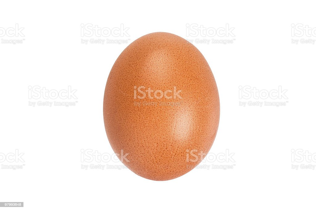 Close-up of an egg royalty-free stock photo