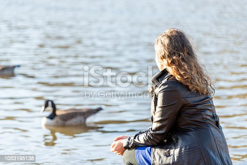Closeup of back of young woman sitting on shore of lake, pond, river, watching wild birds, ducks, goose, geese by water during sunset, sunrise on cold day