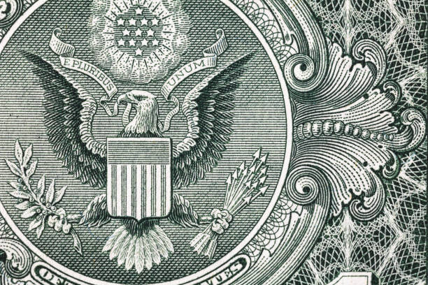 Closeup of back side of 1 dollar bill for design purpose us currency stock pictures, royalty-free photos & images