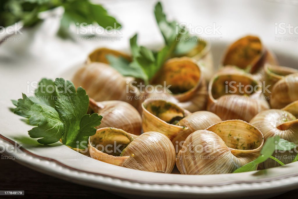 Closeup of baked snails with garlic butter royalty-free stock photo