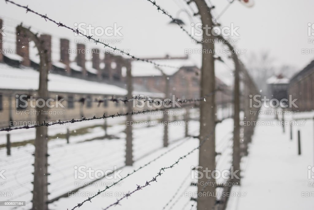Closeup Of Barbed Wire Fence In Auschwitz Stock Photo & More ...