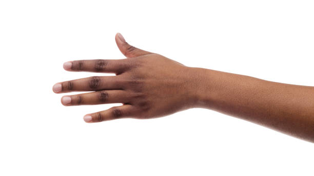 Closeup Of Black Female Hand Isolated On White Background Closeup Of Black Female Hand Isolated On White Background. Panorama, Copy Space black ethnicity stock pictures, royalty-free photos & images