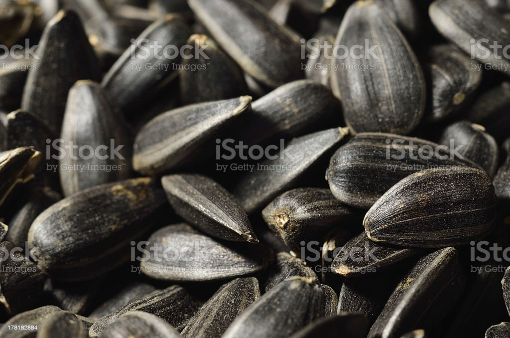 Close-up of black oil sunflower seeds royalty-free stock photo