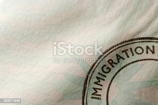 Close-up of blank immigration stamp with copy space.