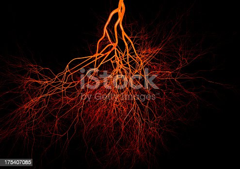 istock Closeup of blood vessels colored in red and orange 175407085