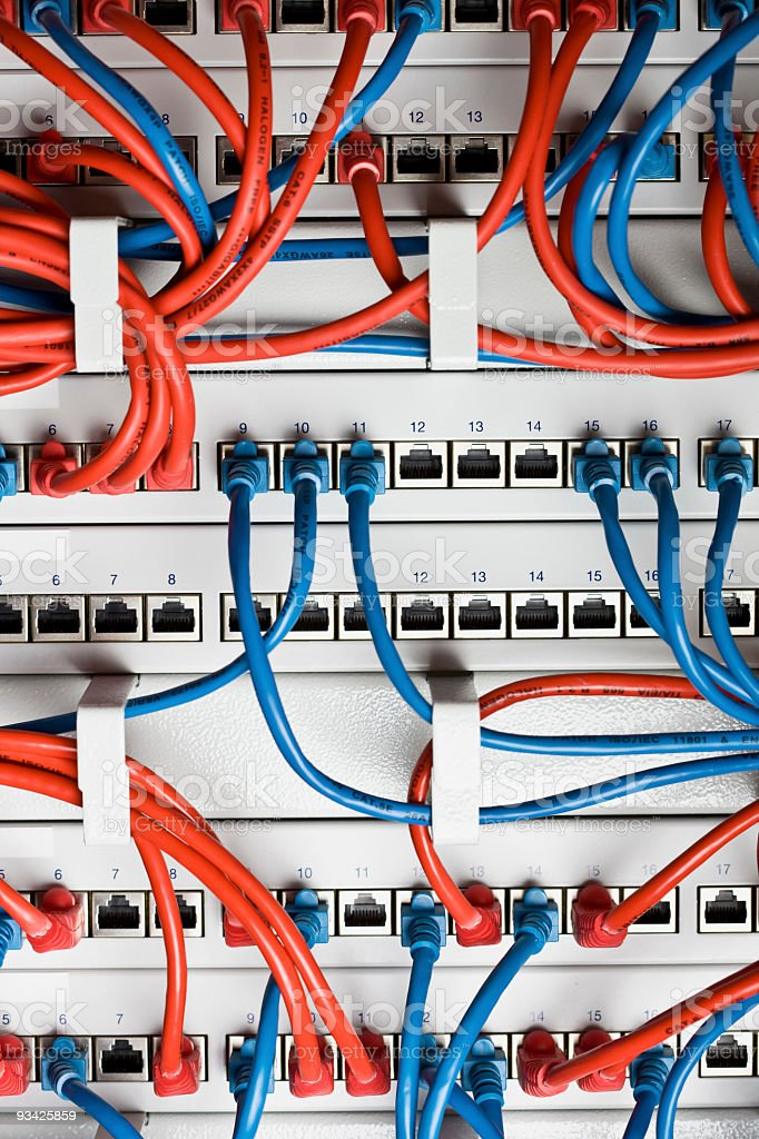 Close-up of blue and red network switch cables stock photo