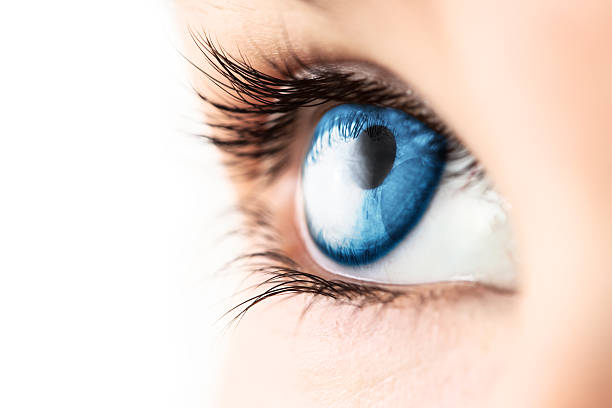 gros plan de l'oeil bleu avec des cils - yeux bleus photos et images de collection