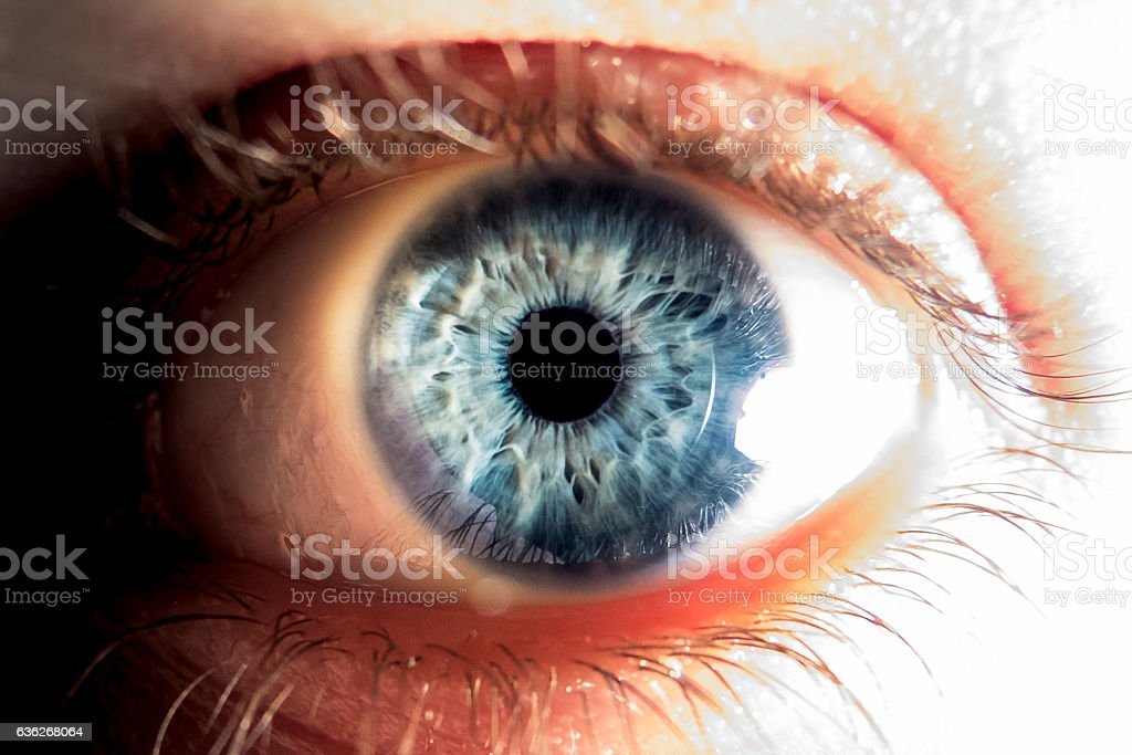 Close-up of blue human eye stock photo