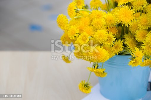 Closeup of blue metal bucket full of bright yellow dandelions. Flowers in vase. Summer. Outdoor