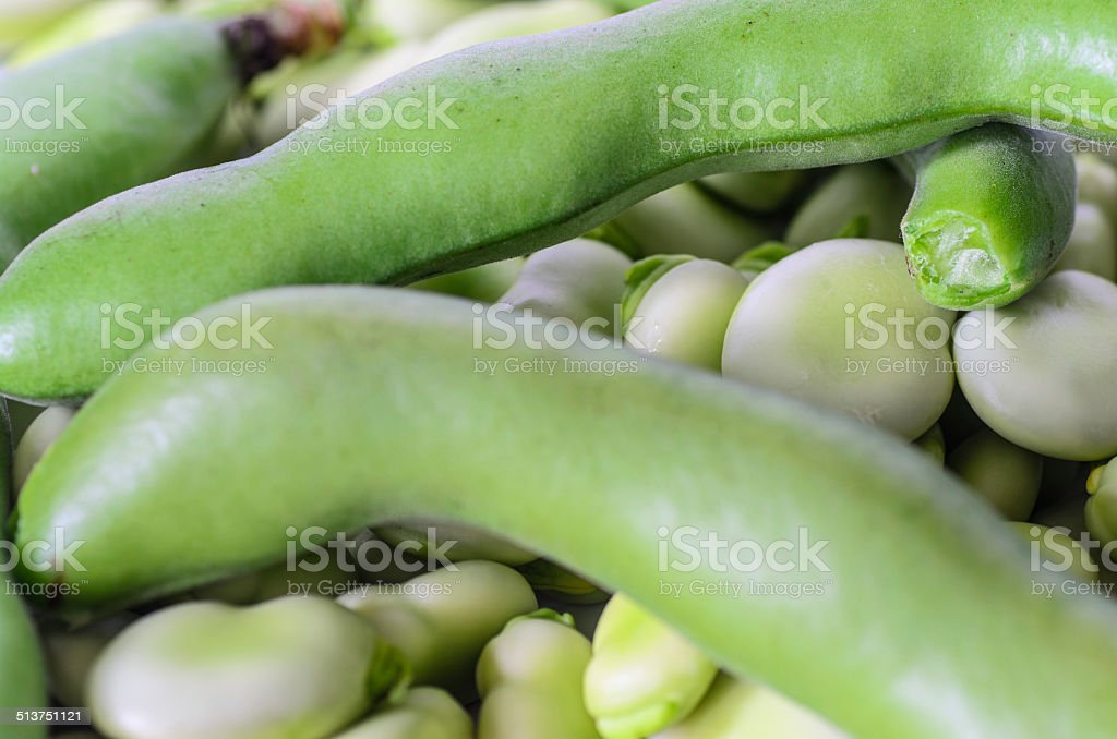 closeup of broad bean - background, texture stock photo